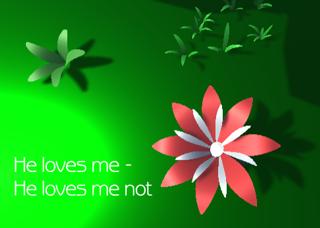 He loves me - He loves me not